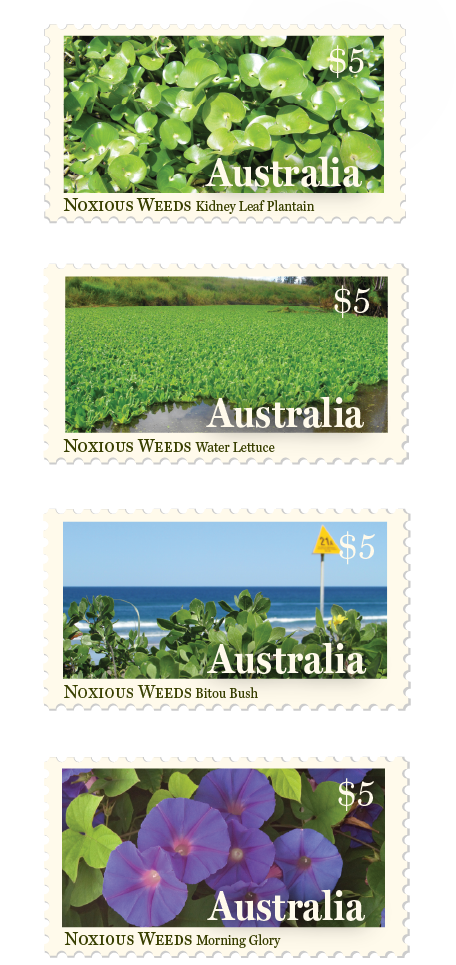 Postage Stamp design Byron Bay Graphic Designs Loretta Faulkner Graphic Designer and Website Developer